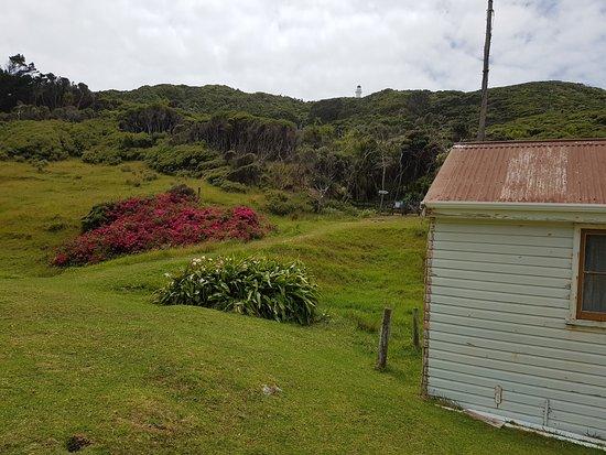Gisborne, New Zealand: Historic buildings at base, lighthouse on skyline.
