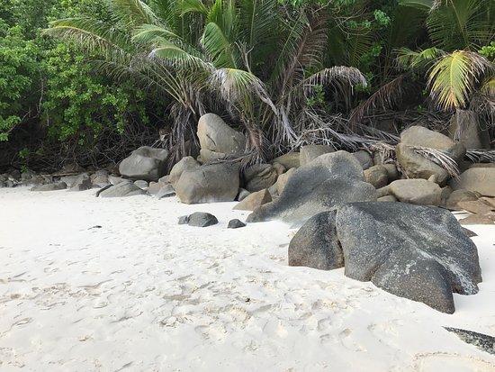 Port Glaud, Seychelles: photo7.jpg