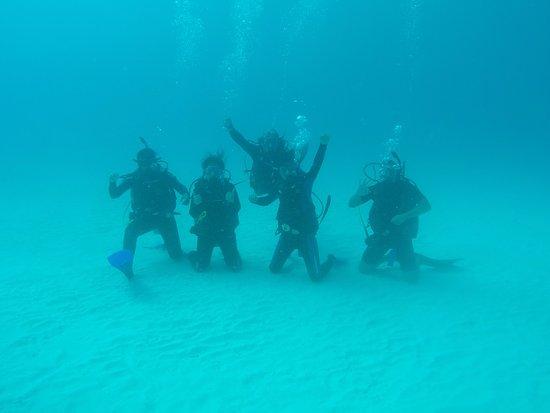 Dive Shop Mexico : Amazing!!!