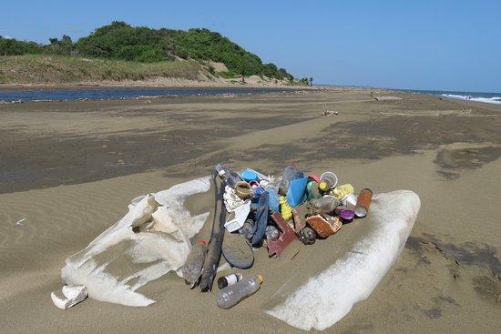 Bull Beach: Collection of flotsam and jetsam arranged neatly on driftwood at Playa Toro.