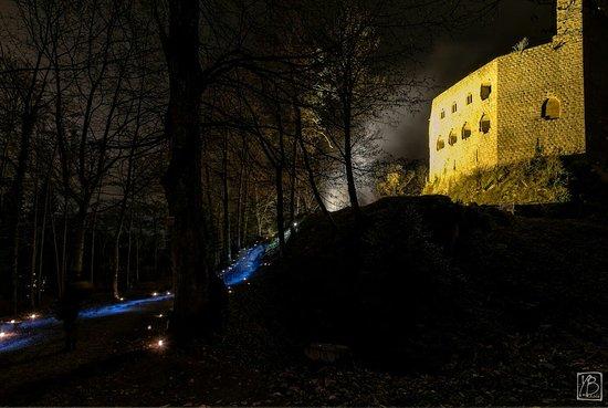 Chateau du Spesbourg