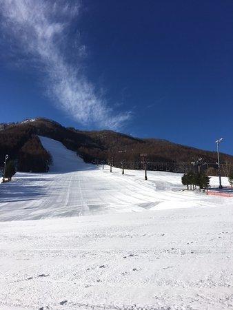 Echo Valley Ski Area : 朝イチのメインゲレンデ