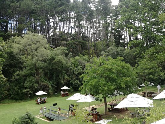 Constantia, Sudáfrica: Looking down on the lawns at Eagle's Nest
