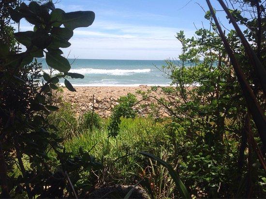 Punakaiki Beach Camp : photo0.jpg