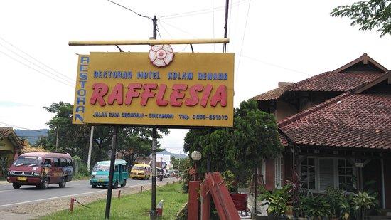 Restoran Dan Hotel Rafflesia Murah Indah Dan Berkelas Walau Tak