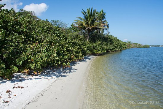 Hobe Sound National Wildlife Refuge 2018 All You Need To Know Before Go With Photos Tripadvisor