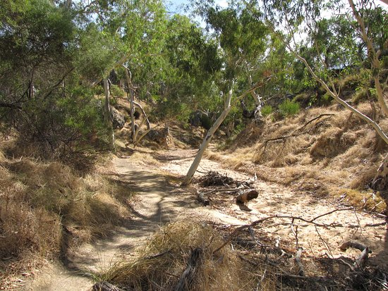 Eneabba, أستراليا: Dry river bed to caves