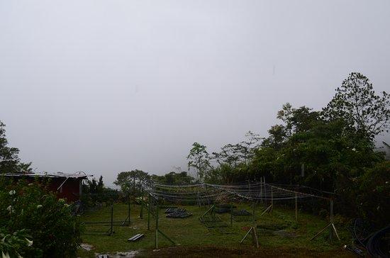 Foto de Kota Kinabalu District