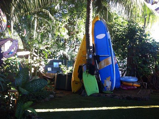 The Tiki Beach Hostel: November 2016
