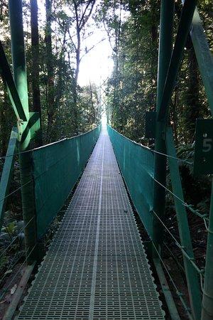Sky Adventures: Bridge