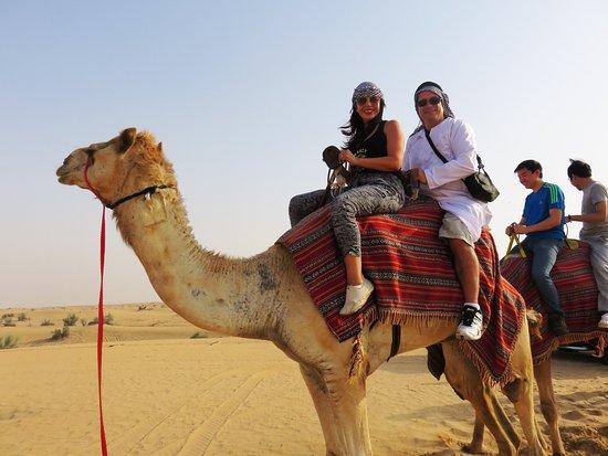 4x4 desert safari dubai camel riding picture of 4x4 desert 4x4 desert safari dubai camel riding thecheapjerseys Image collections