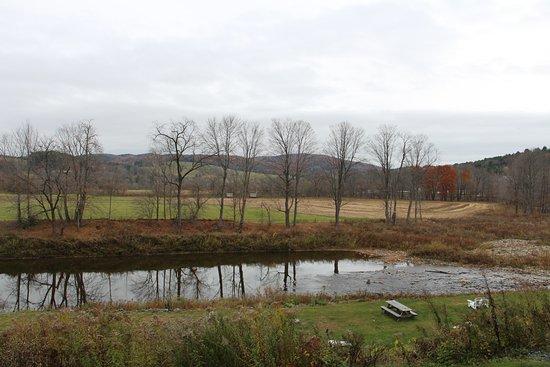 Bilde fra The Shire Woodstock