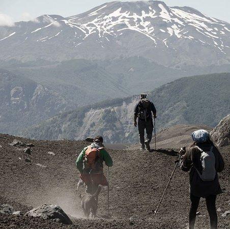 Panguipulli, Chile: Trekking al glaciar con Choshuenco EcoAndino