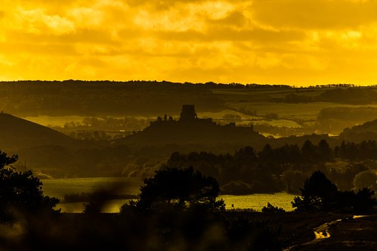 view of Corfe Castle from Arne