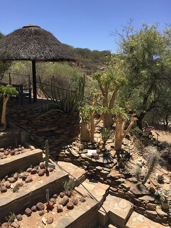 Windhoek, Namibia: A peaceful walk around the botanical gardens. Well labeled, probably best to come after rainy se