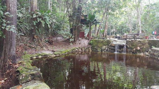 Amazon Ecopark Jungle Lodge: Piscinas naturais.... Um sonho!