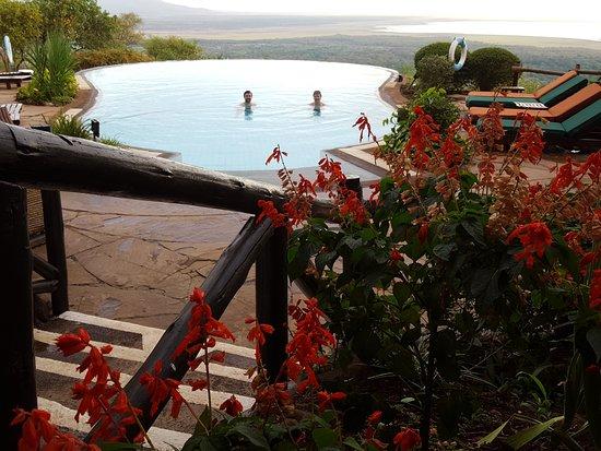 Lake Manyara Serena Lodge: good sized pool but not heated