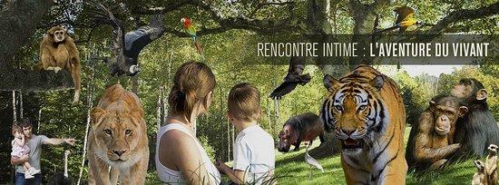 Ferolles-Attilly, Francja: bannière de bienvenue