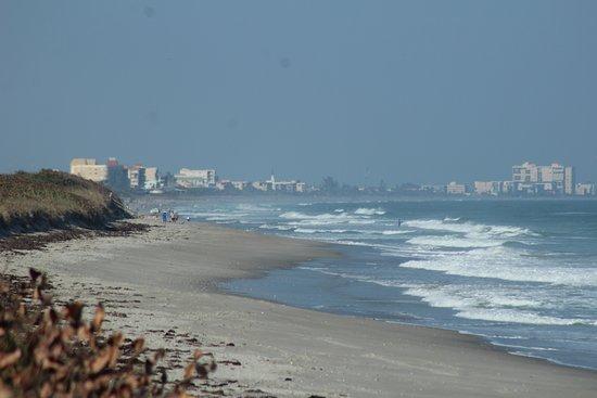 Apollo Beach Photo