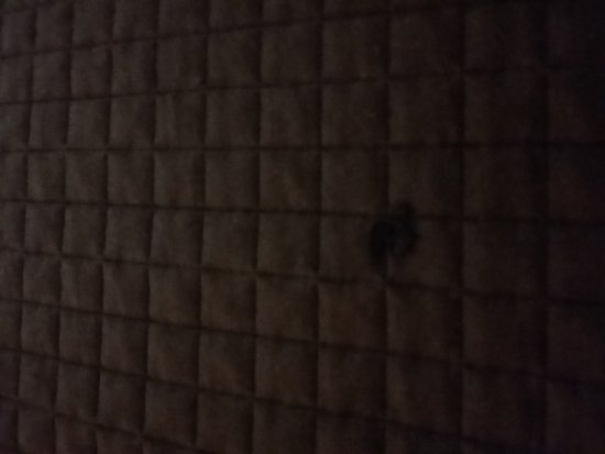 Motel 6: 20161201_222830_large.jpg
