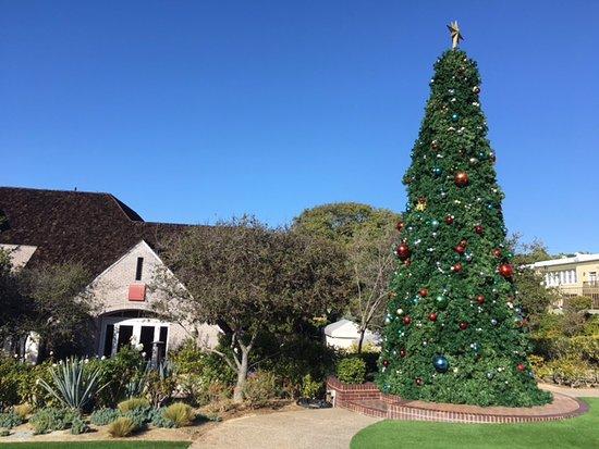 Del Mar, CA: Beautiful Christmas tree
