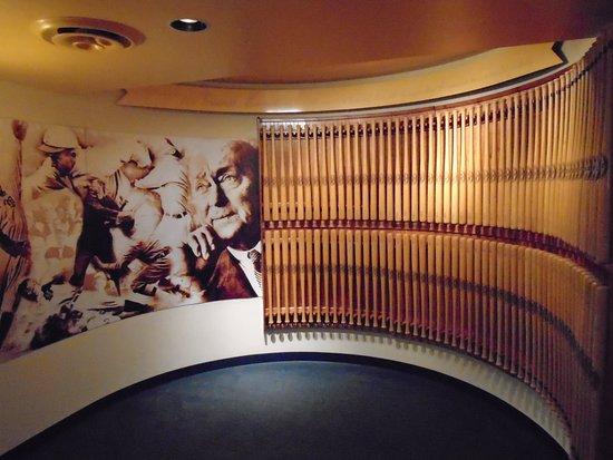 Royston, Georgien: Cobb museum