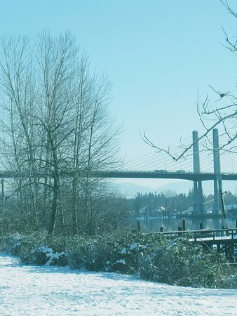 Pitt Meadows, Canada : Senic View