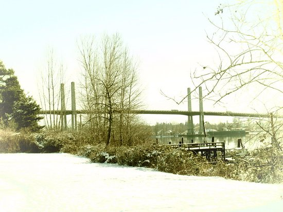 Pitt Meadows, Kanada: Snow sites!