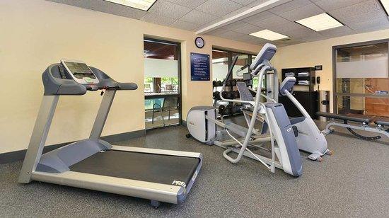 แครอลสตรีม, อิลลินอยส์: Fitness Center - Treadmill