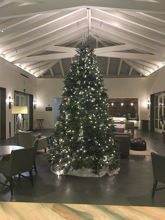 Hyatt Vineyard Creek Hotel: Christmas at the Hyatt
