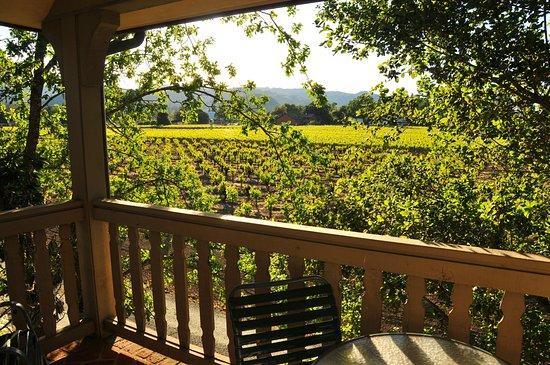 Vineyard Country Inn 사진