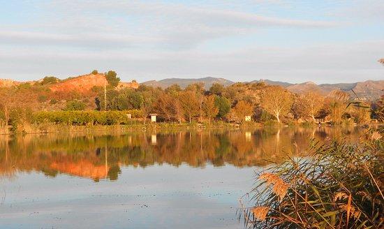 els estanys d'Almenara