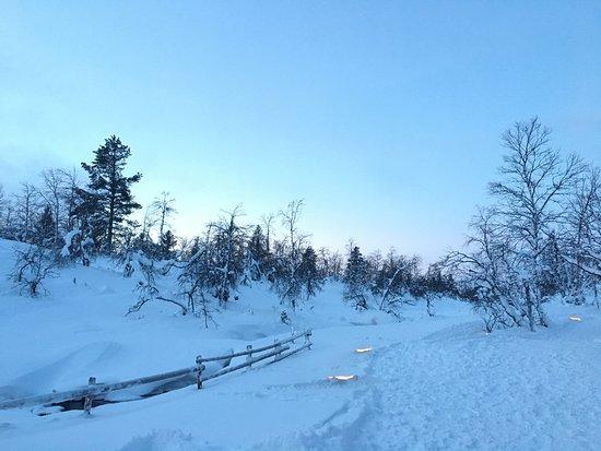 Lapland Hotel Riekonlinna: Gala meal and santas hut