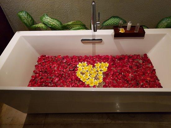 卡拉尼亚体验塞米亚克地标酒店照片