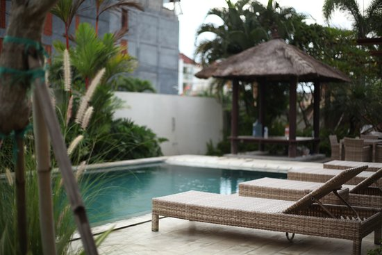 Jonsen Homestay: The pool - great place to hangout