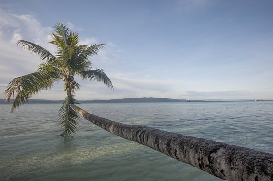 Raja Ampat Dive Lodge: A little way up the beach ©jeremysmithphotography.com