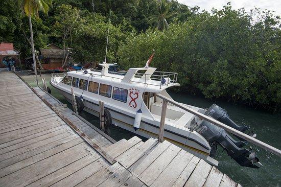 Raja Ampat Dive Lodge: The car-park is full! ©jeremysmithphotography.com