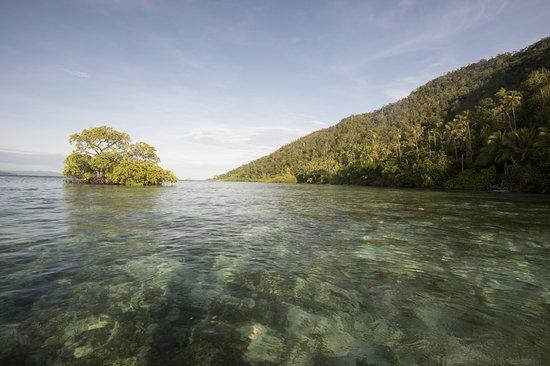 Raja Ampat Dive Lodge: Take a kayak and explore nearby ©jeremysmithphotography.com