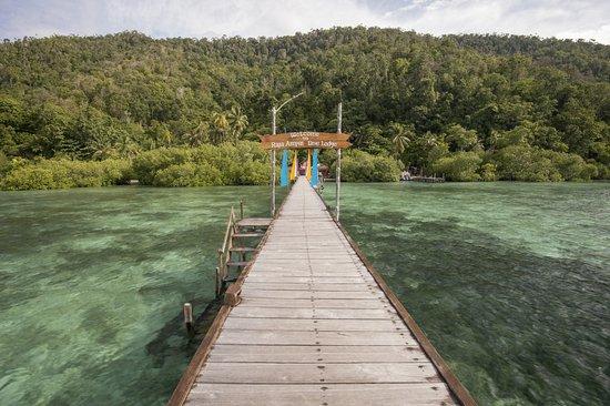 Raja Ampat Dive Lodge: Jetty