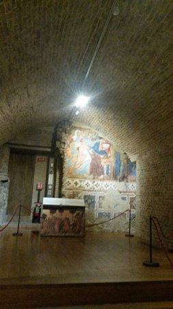Il Duomo de Siena, de Santa María de la Asunción. Cripta