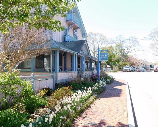 Bilde fra Oak Bluffs Inn