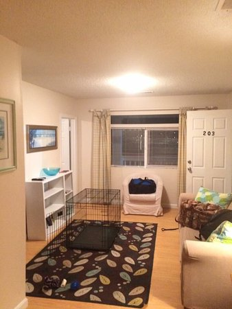 Ocean Inn: Cute apartment. Dog friendly!