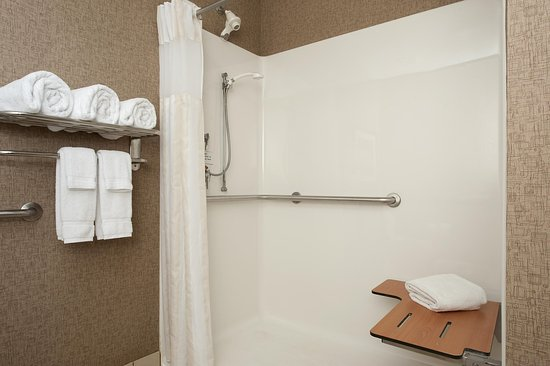 Hilton Garden Inn Columbus/Edinburgh: Accessible Shower