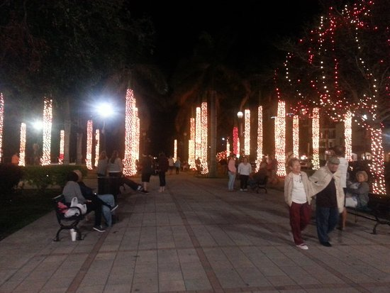 Downtown Fort Pierce: palm tree garden all lit up and synchronized to Christmas Carols