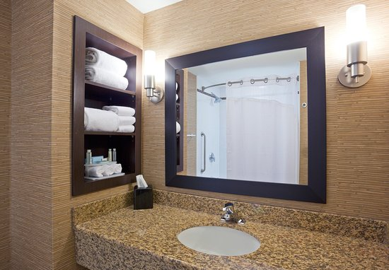 Holiday Inn Express Hotel & Suites Woodstock: Guest Bathroom