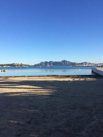 sehr gut Strand bahia de pollensa - Picture of Port de Pollenca Beach, Port d...