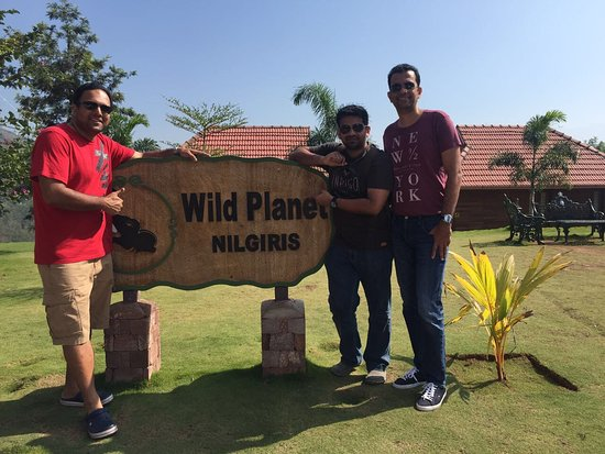 Wild Planet Jungle Resort: photo0.jpg