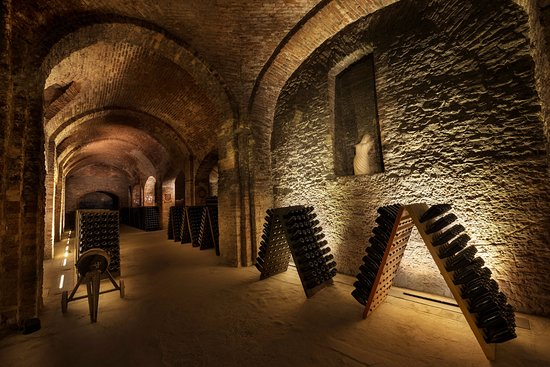 Cantine Bosca - Cattedrali Sotterranee