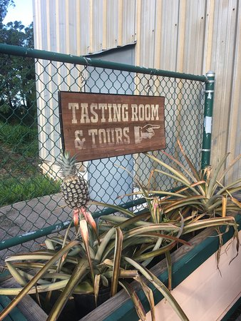 Makawao, HI: They have pineapples growing in pots!