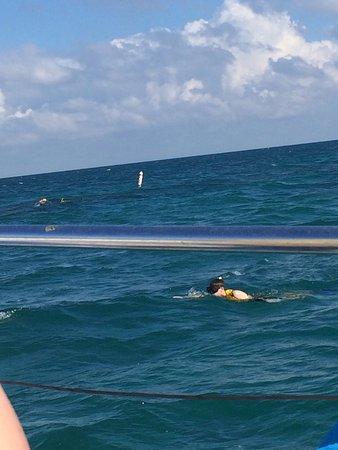 Reef Roamer Snorkel: photo0.jpg